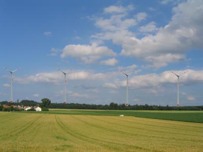 Eine Simulation des Ebersberger Forsts mit Windrädern